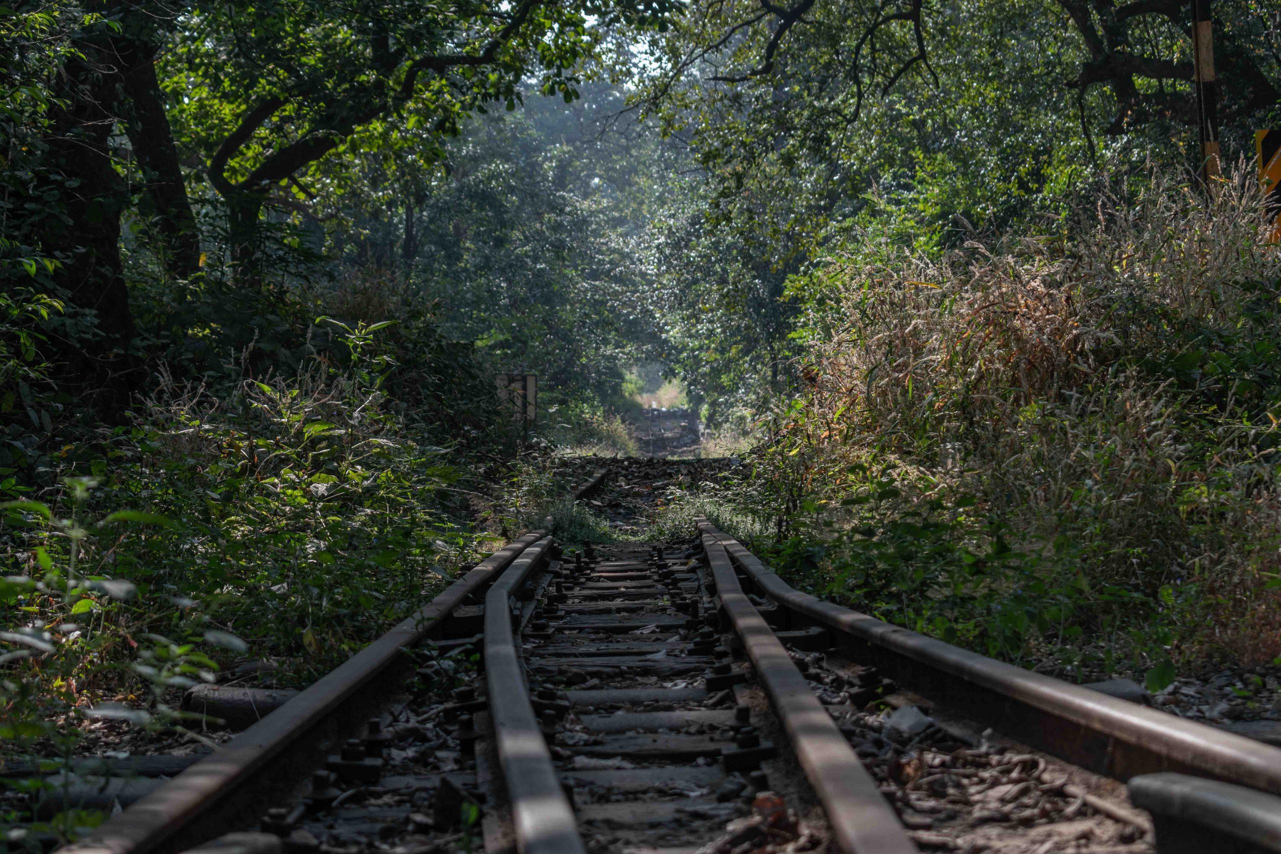 Train Travel in Kerala
