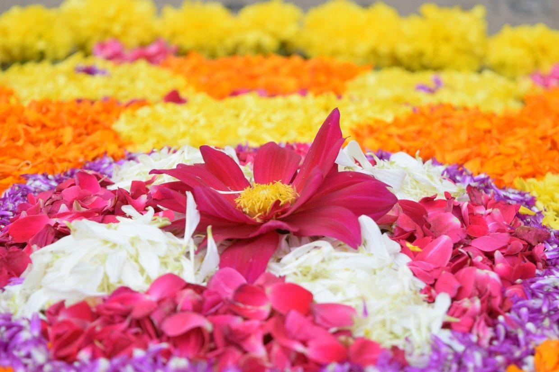 Onam celebrations in Kerala
